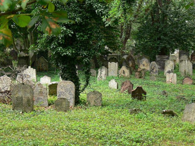 Старое еврейское кладбище в Колине, основанное в 1418 году