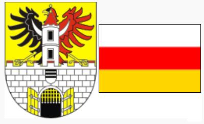 Герб и флаг города Подебрады, Чехия